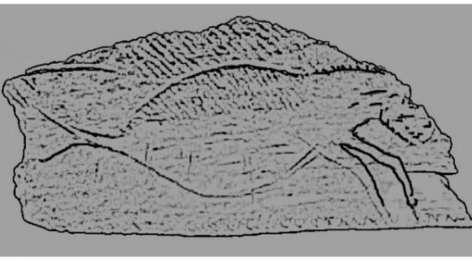 Hallado en Asturias: El hipocampo: el primer ser mitológico de la historia. Pulsa sobre la foto para verla a tamaño real.