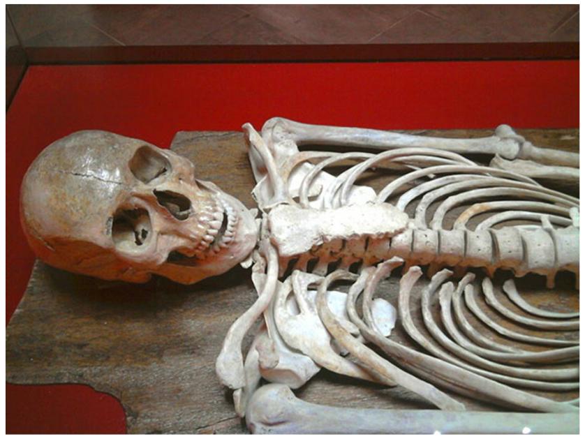 """¿Descendía de Iberia parte de la élite fundadora de Cartago? Detalle de los restos óseos del joven """"príncipe"""" fenicio hallado en la necrópolis de Byrsa, Cartago (finales del siglo VI a. C.)."""